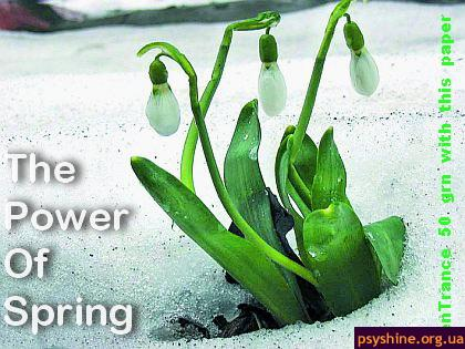 The Power Of Spring