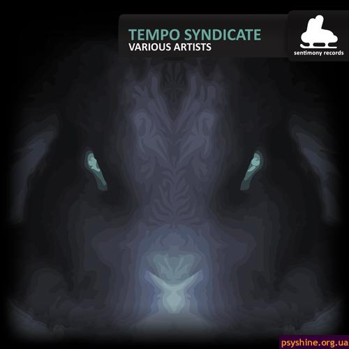"VA ""Tempo Syndicate"" (Sentimony Records, 2011)"
